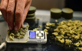 Внутри высокотехнологичных лабораторий, которые обеспечивают безопасность вашей легальной марихуаны