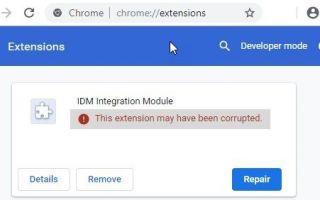 Internet Download Manager: возможно, это расширение повреждено!