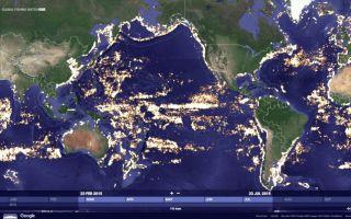 Google Планета Земля не загружается; Как исправить? [Решено]