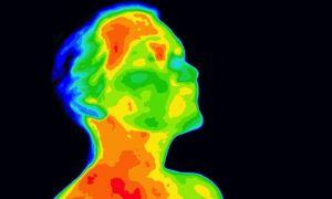 Тепловидение может показать, насколько сильно работает ваш мозг