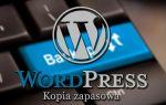 WordPress — как сделать резервную копию страницы и базы данных